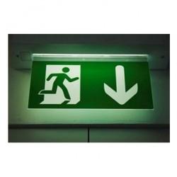 Проектирование и монтаж систем оповещения и управления эвакуацией