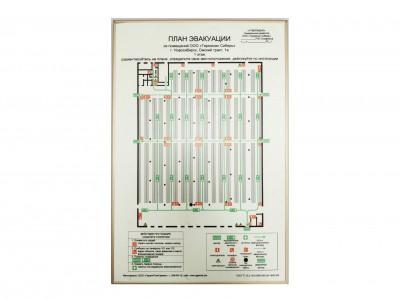 План эвакуации фотолюминесцентный, 600х400